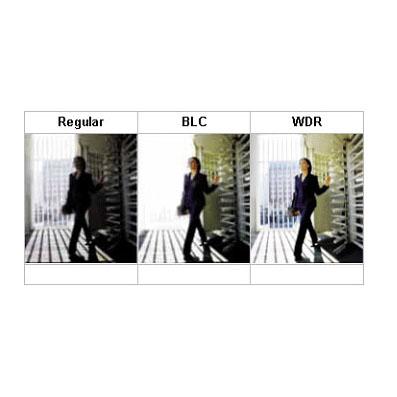 واژه BLC چیست؟